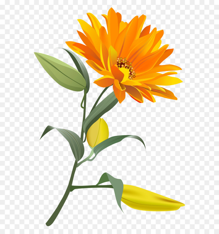 ладонях оранжевый цветочек картинка разговаривал своими