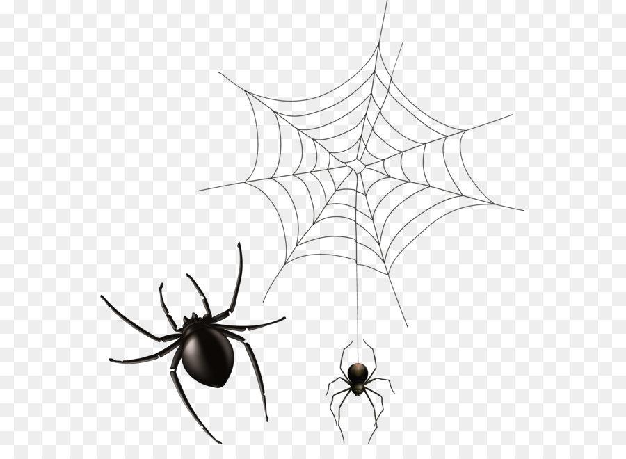 Картинки с пауком рисунок