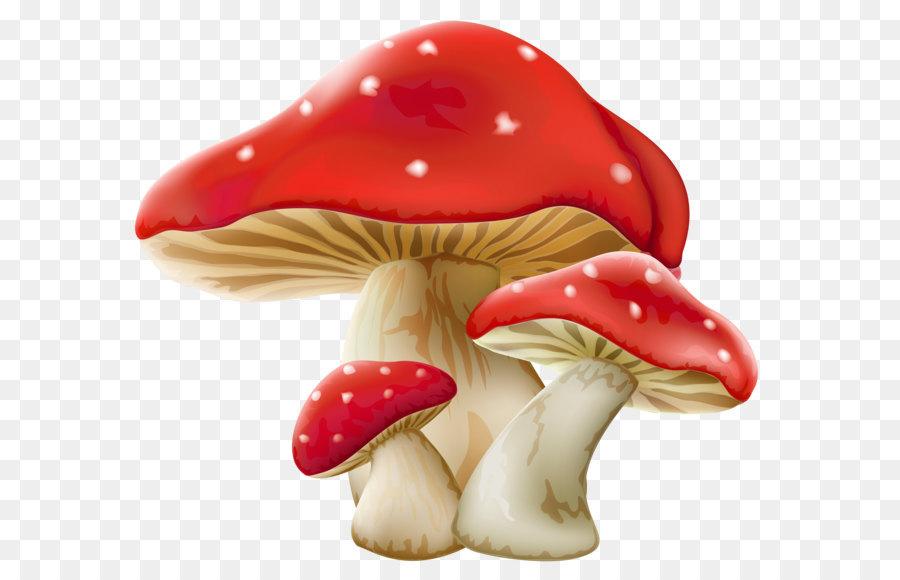 Красивые картинки грибов мультяшные