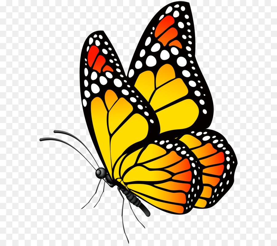 Смешинки открытка, бабочки рисунок на прозрачном фоне