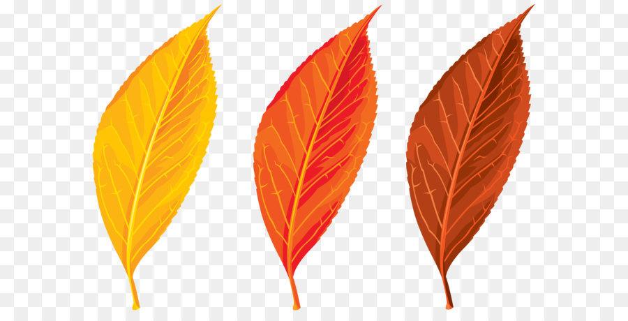Картинка осень листочки