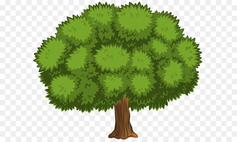 прочие раскидистое дерево картинки без фона стендах