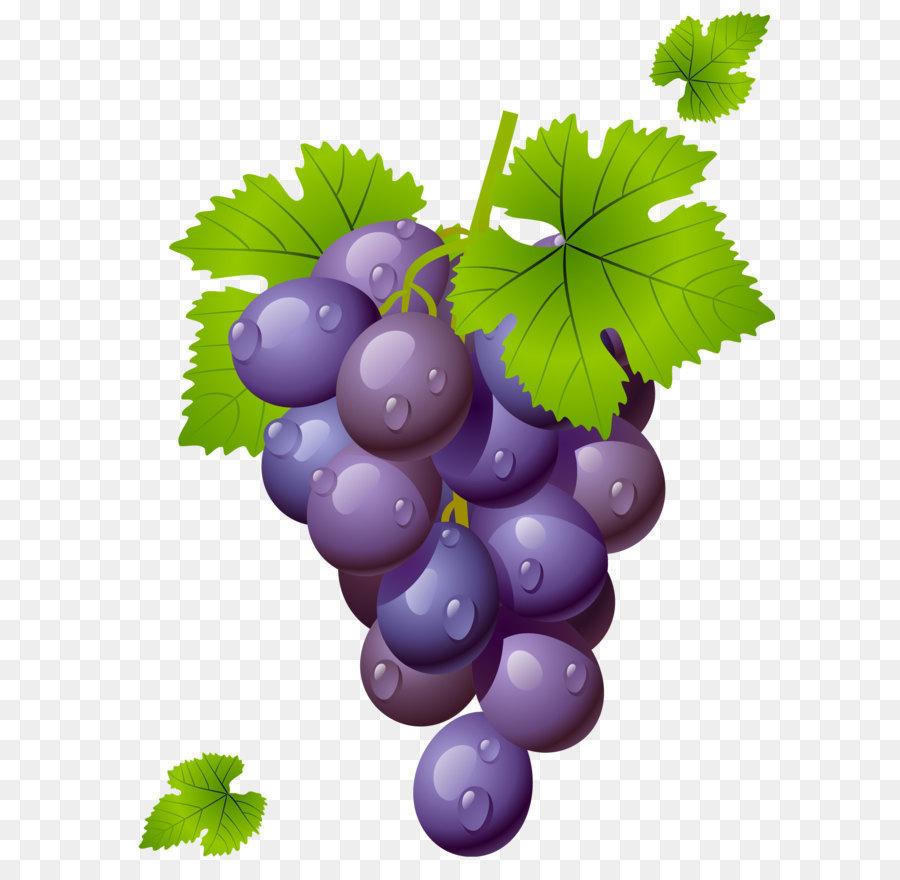 Картинки винограда для детей цветные, медсестры прикольные