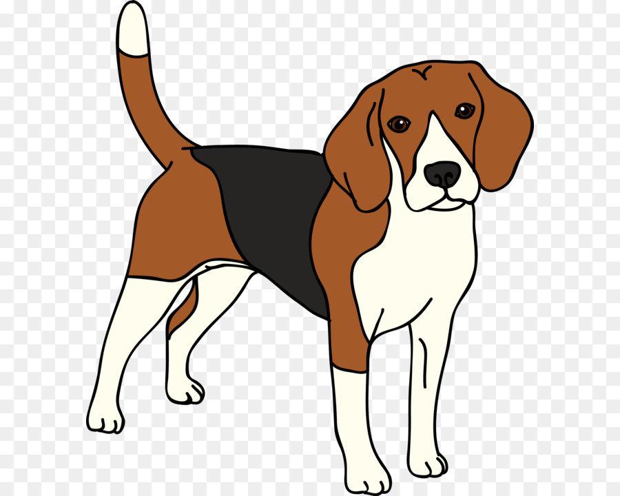 Собаки картинка для детей