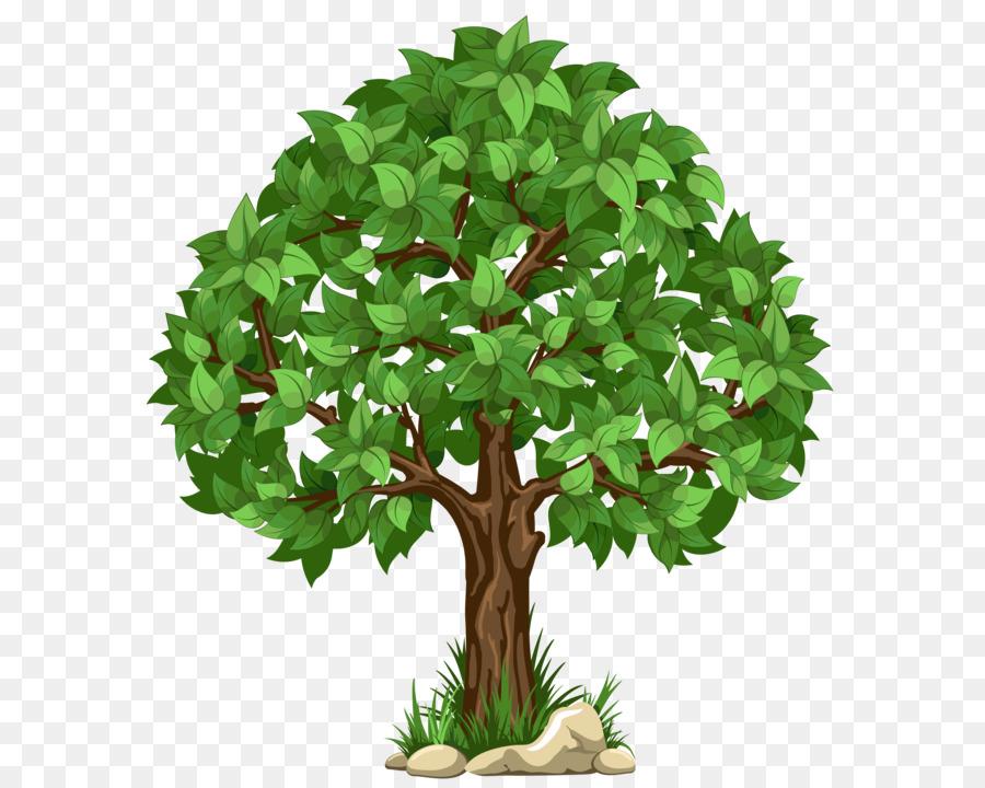 Дерево картинки, открытки прикольные открытки