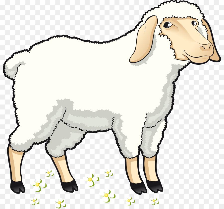 Овца картинки для детей нарисованные, аниме картинки телефон