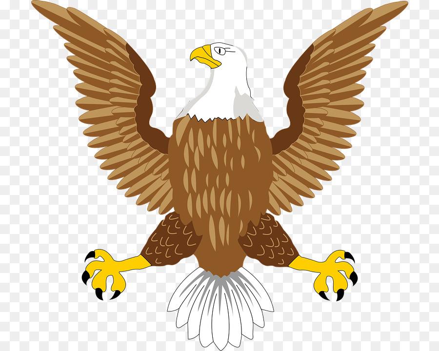 охлаждения картинки орлов на гербах изображают в профиль современная практичная одежда
