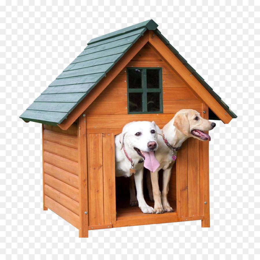 Картинки домик для щенка