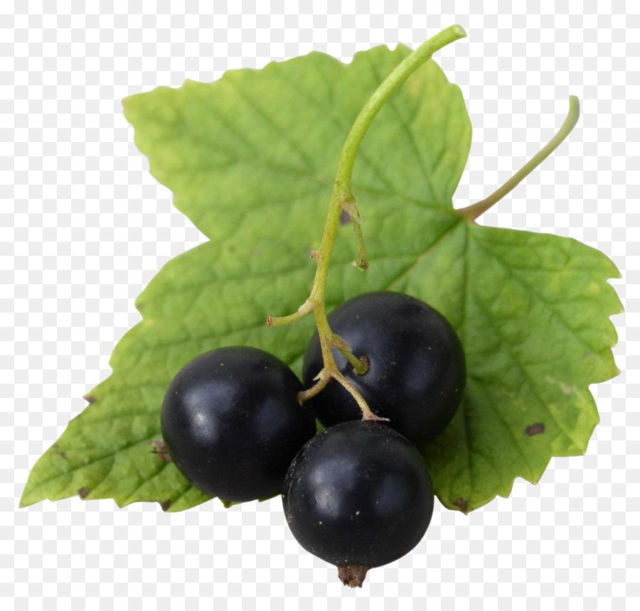 открытка ягода смородина
