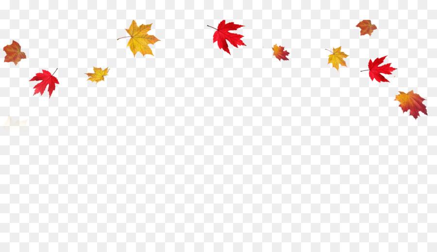Картинки листопада осенью на прозрачном фоне