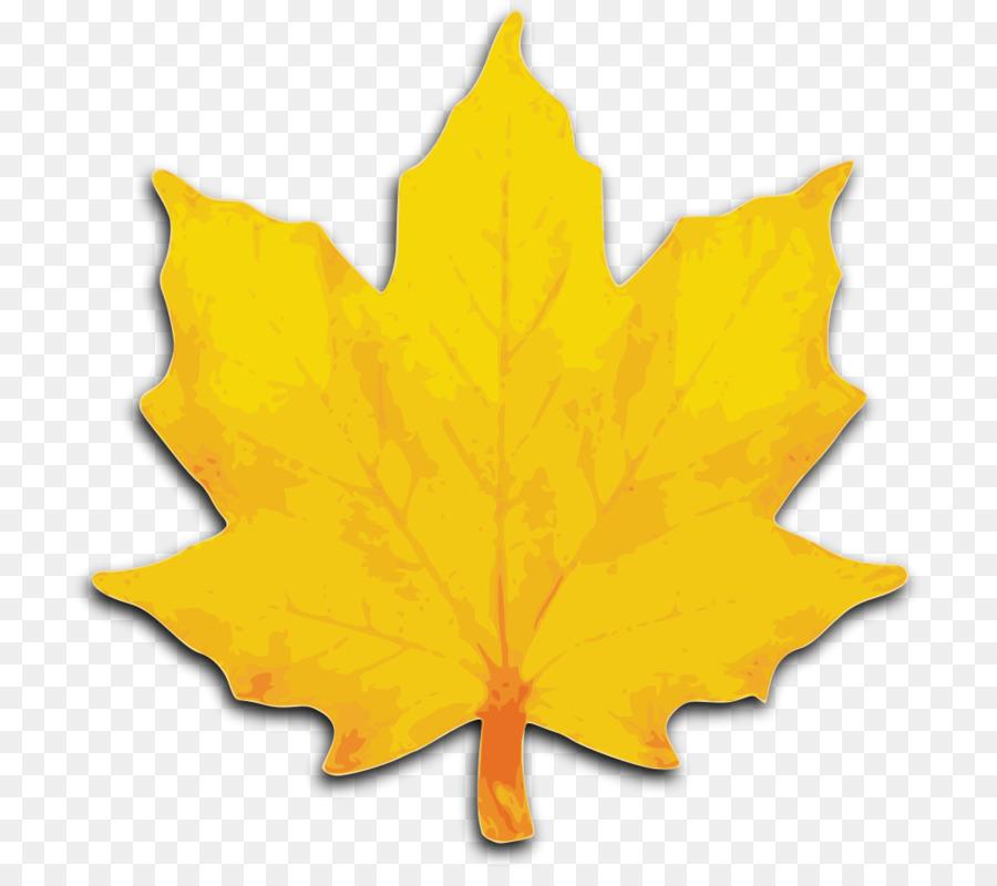 кленовые листья цветные картинки для вырезания больших размеров птица