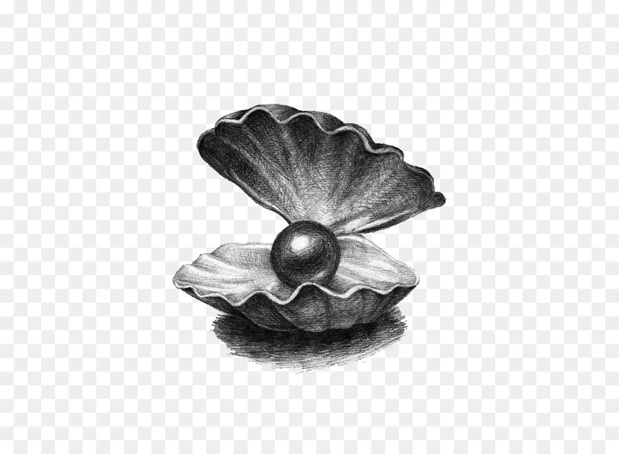 Картинка жемчужина нарисованная