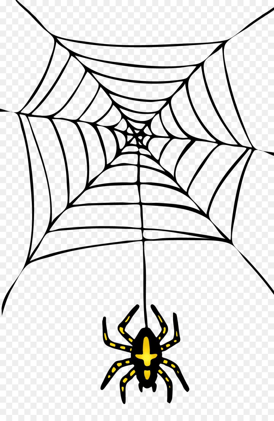 паутина и паук рисунок