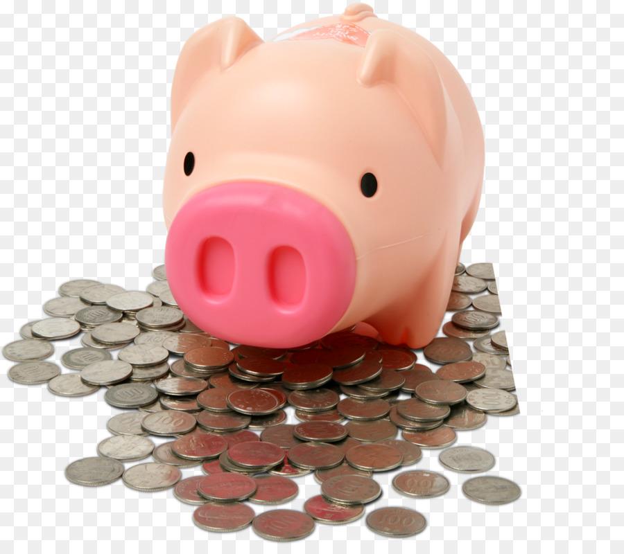 канализации картинка свинка в деньгах выглядит
