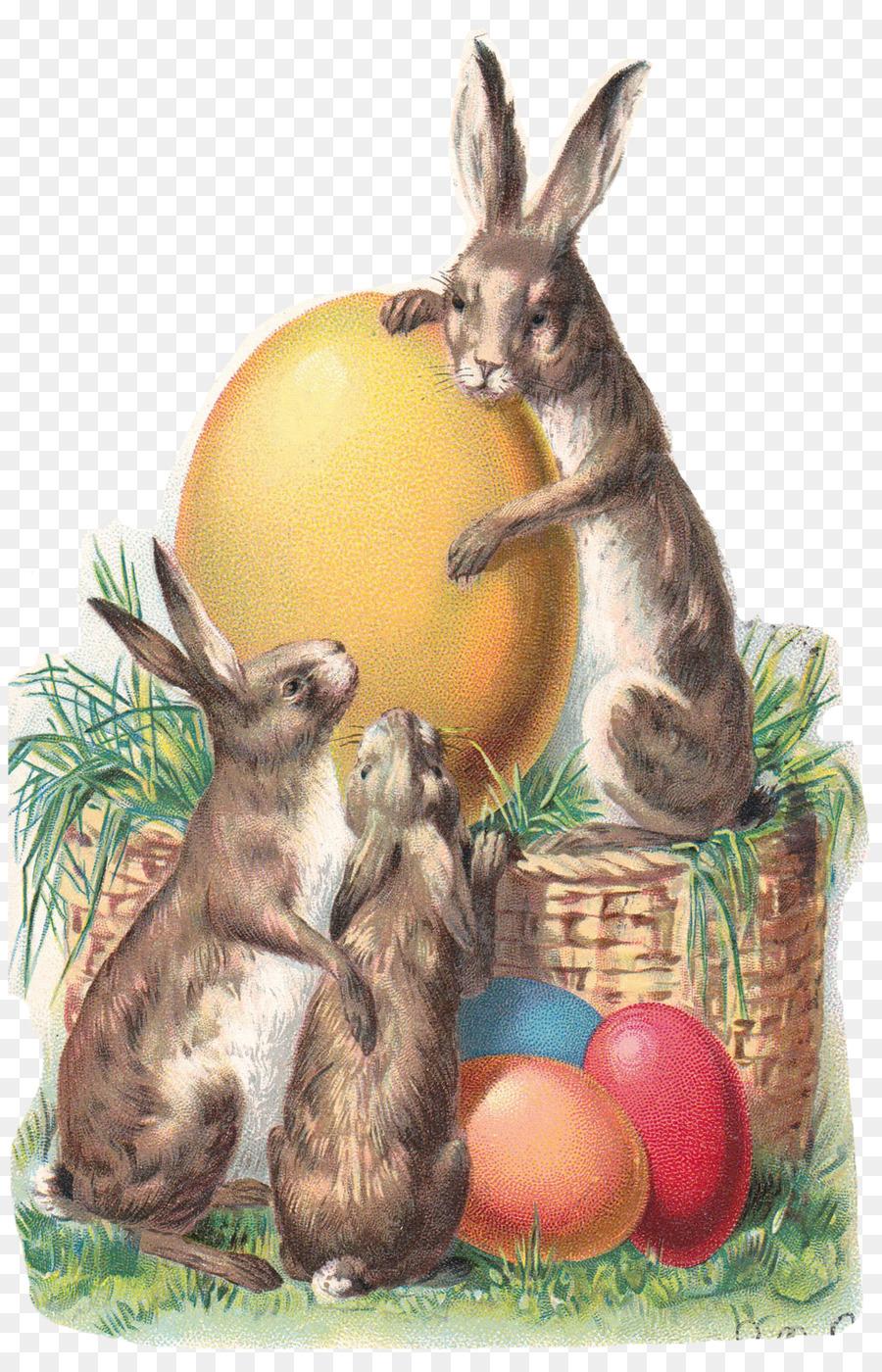 Надписью акерке, пасхальный кролик открытка винтаж