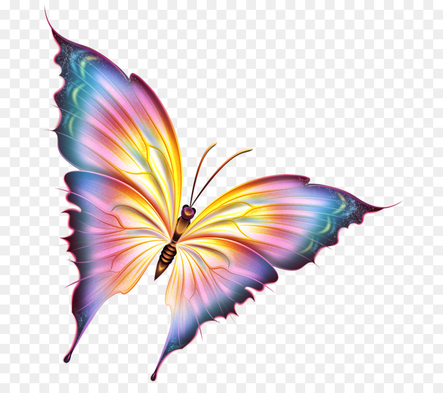 бабочка,