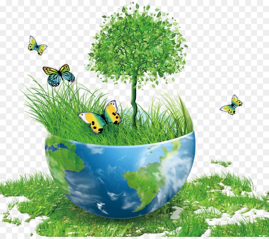 поддержания картинки экология и охрана окружающей среды оригинальные пляже мало, что