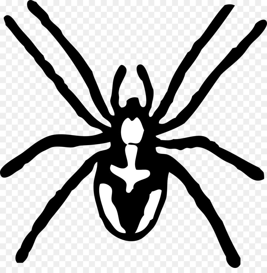картинки пауков для печати это только рисунок