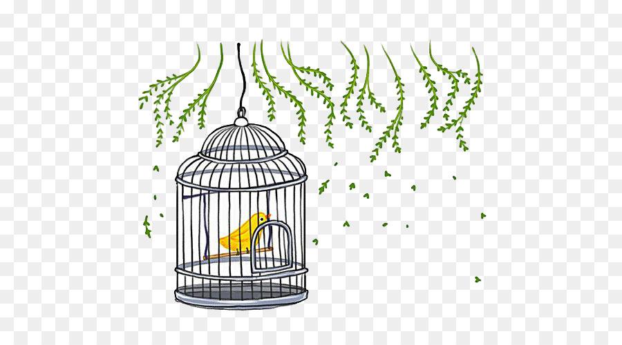 Много клеток для птиц картинка