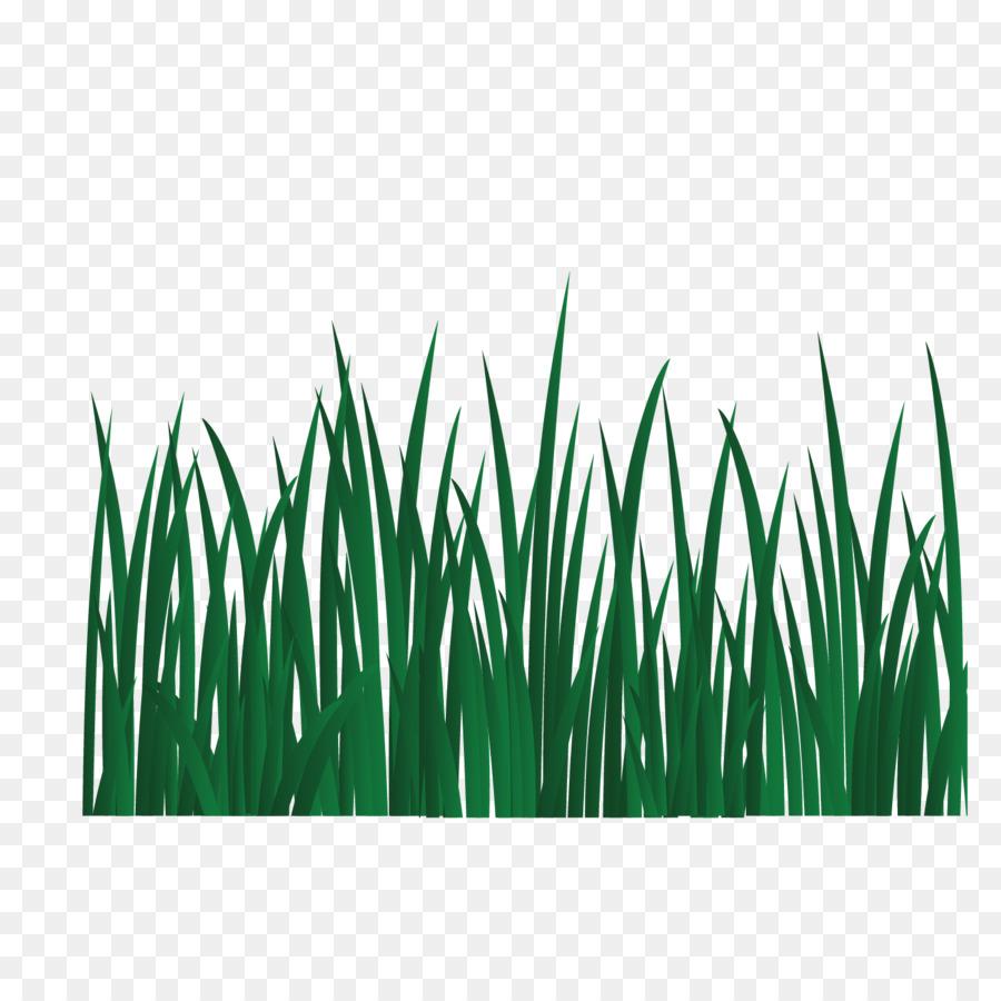 Картинки травы шаблон
