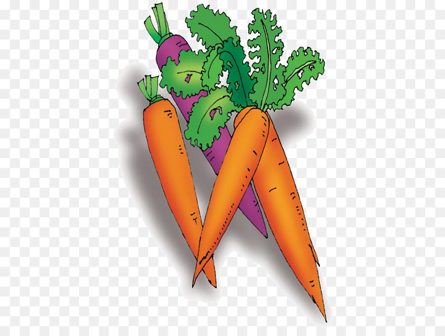 Картинки морковок для детей детского сада