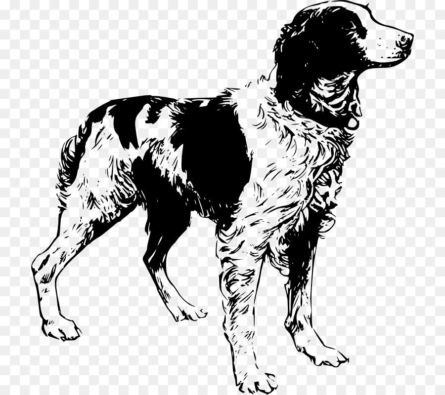 Черно белые картинки собака