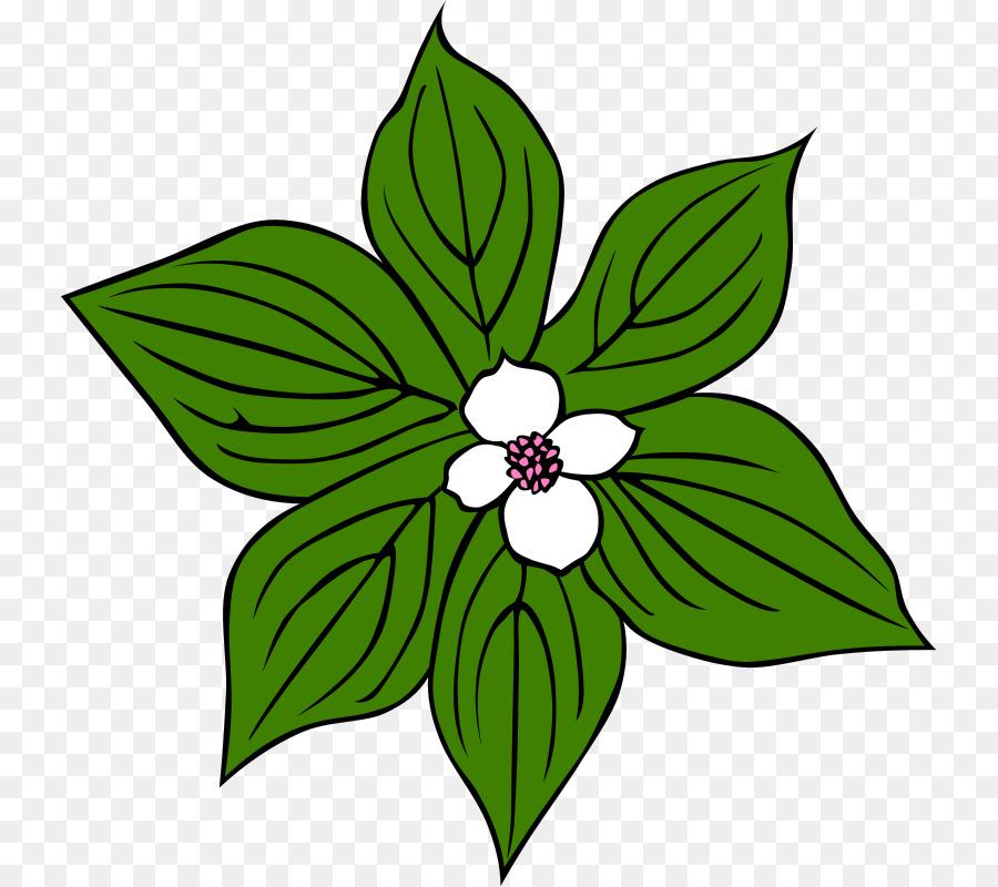 картинка цветочек зеленый деревянные