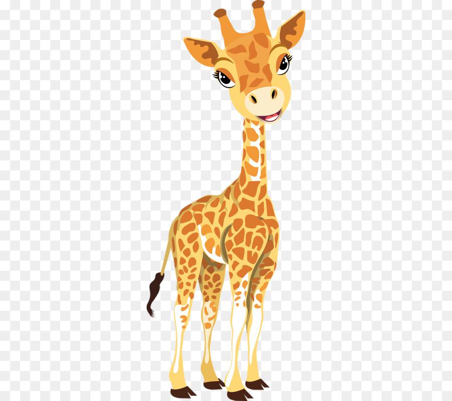 Картинки надписью, жираф в картинках для детей