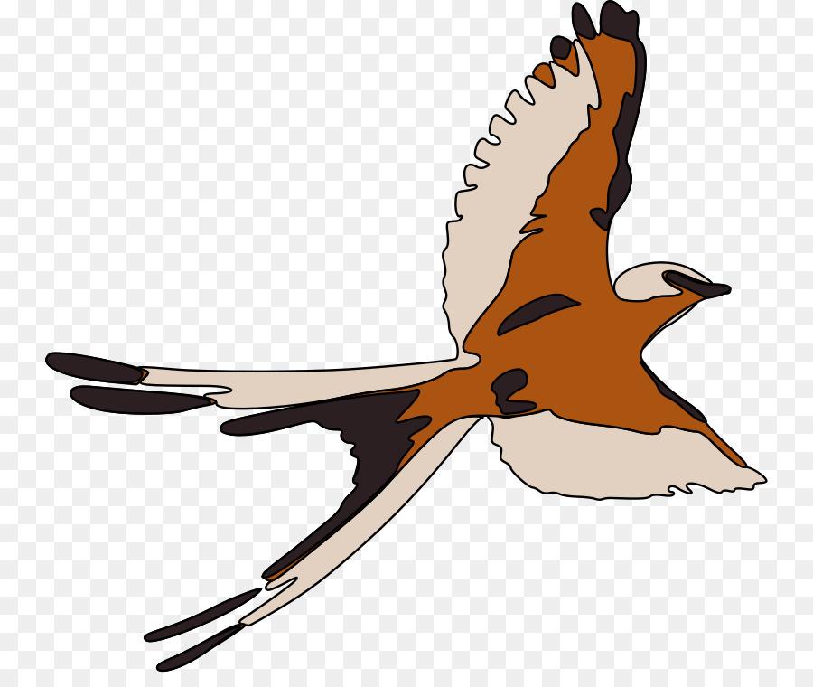 Держимся, птицы в полете картинки для детей
