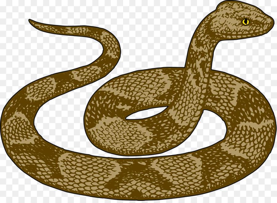 Картинки змея рисунки
