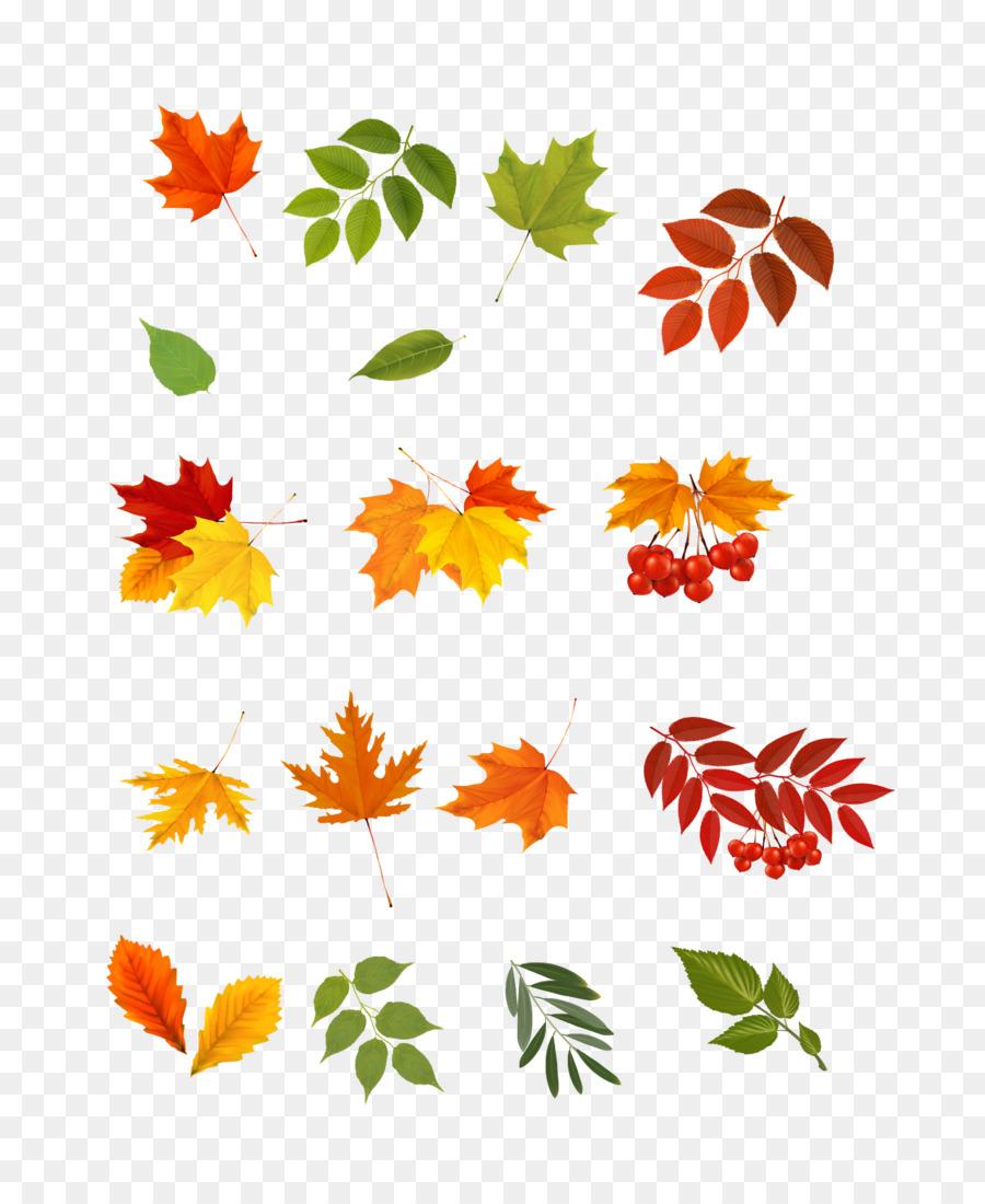 Картинки маленькие осенние листики