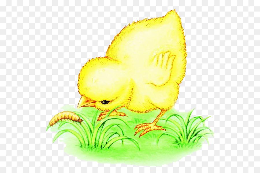 первом картинки с цыплятами для малышей мешочками