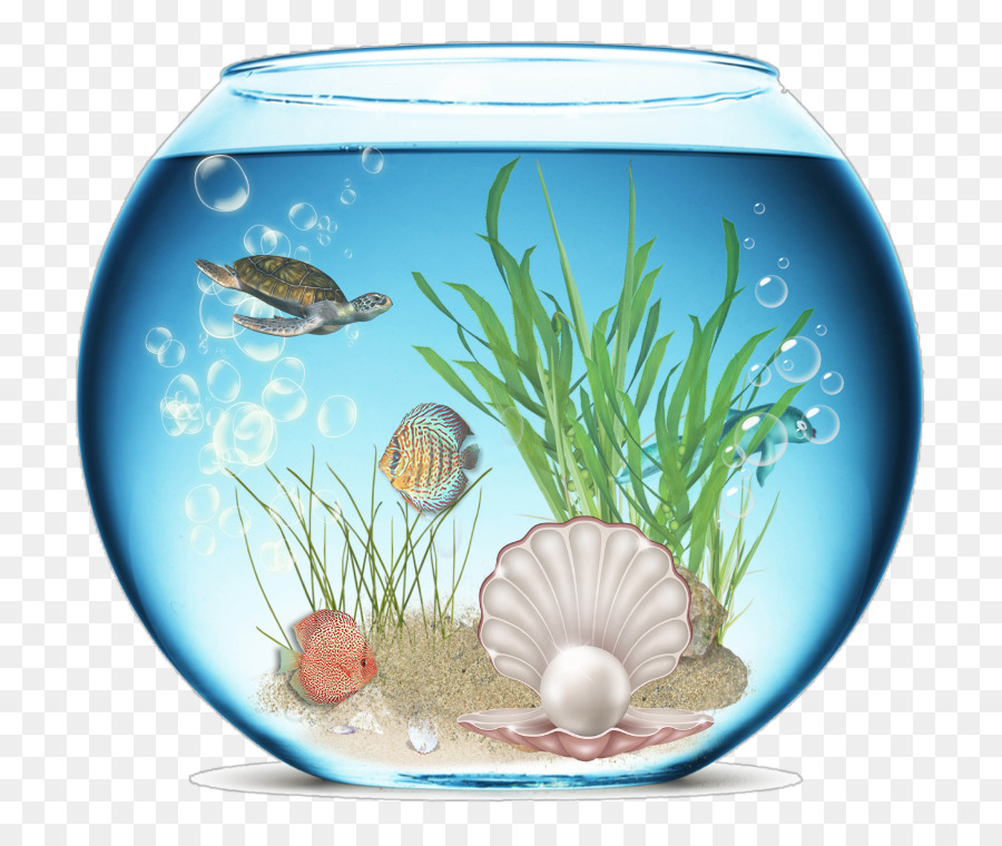 картинки аквариум на полу нарисованы