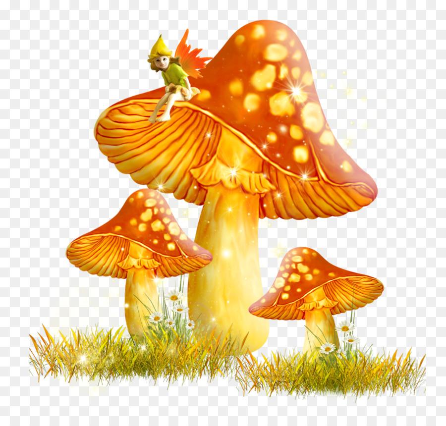 Осенние картинки грибов для детей