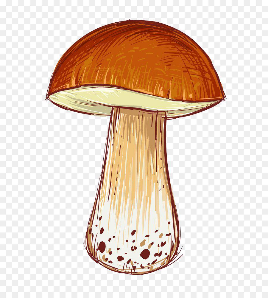 Красивые картинки грибов мультяшные, котов для