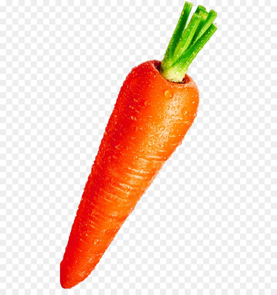 Картинки морковка для детей на белом фоне