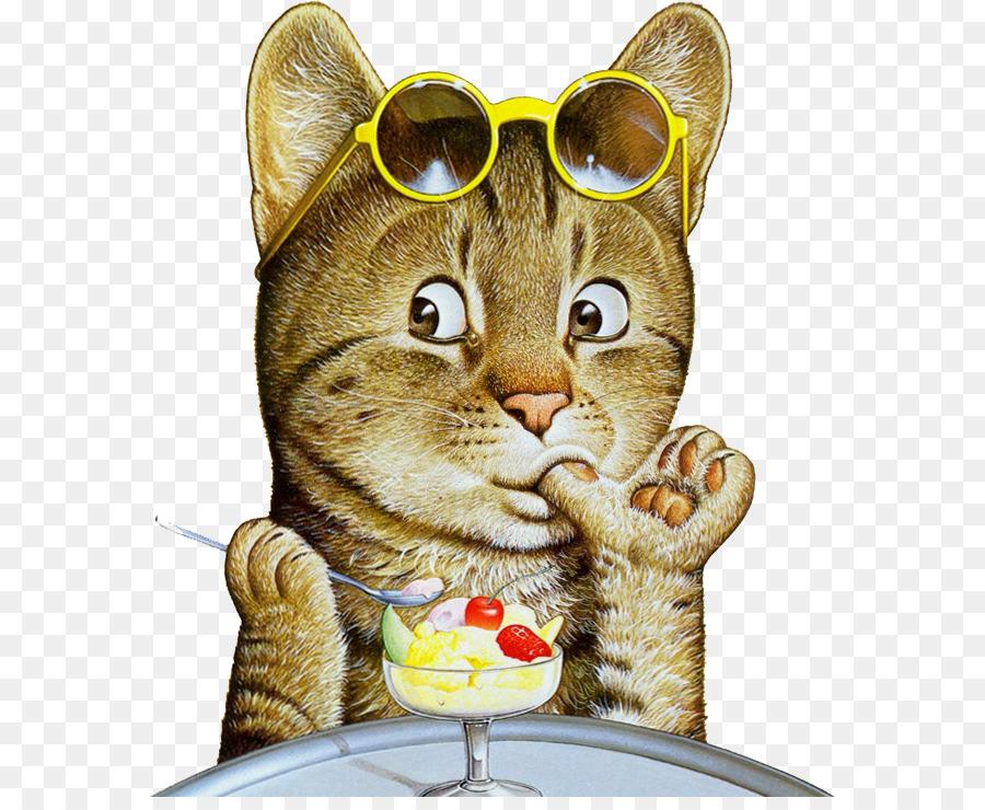Картинки анимации кота, картинки