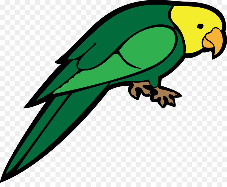 Поздравление подруге, попугай картинка для детей