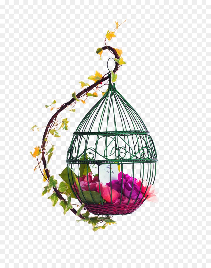 Картинки птичьи клетки