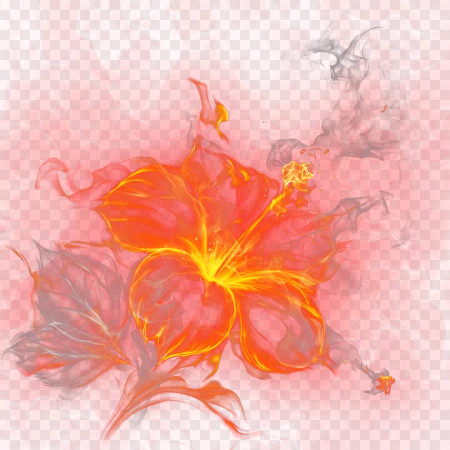 горящий цветок рисунок данный метод