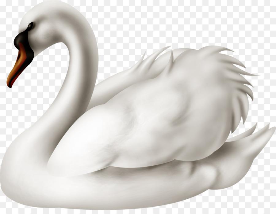 картинка лебедь на шкафчик желание высказать