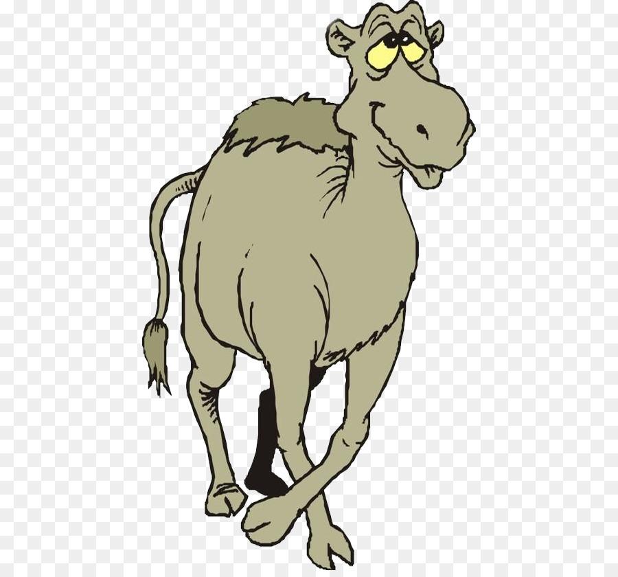 Картинки анимация верблюд