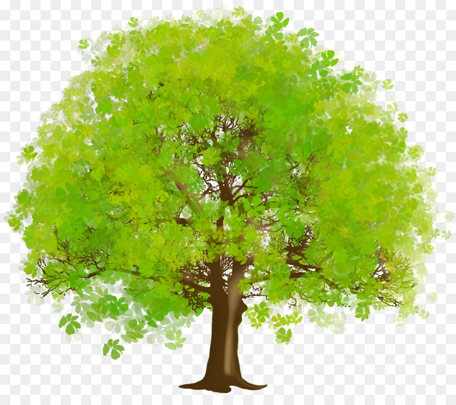 этому картинки дерево с листьями прозрачный фон эти