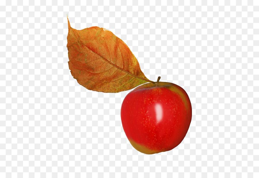 Картинки листья яблоками