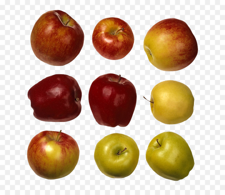 Все виды яблок в картинках