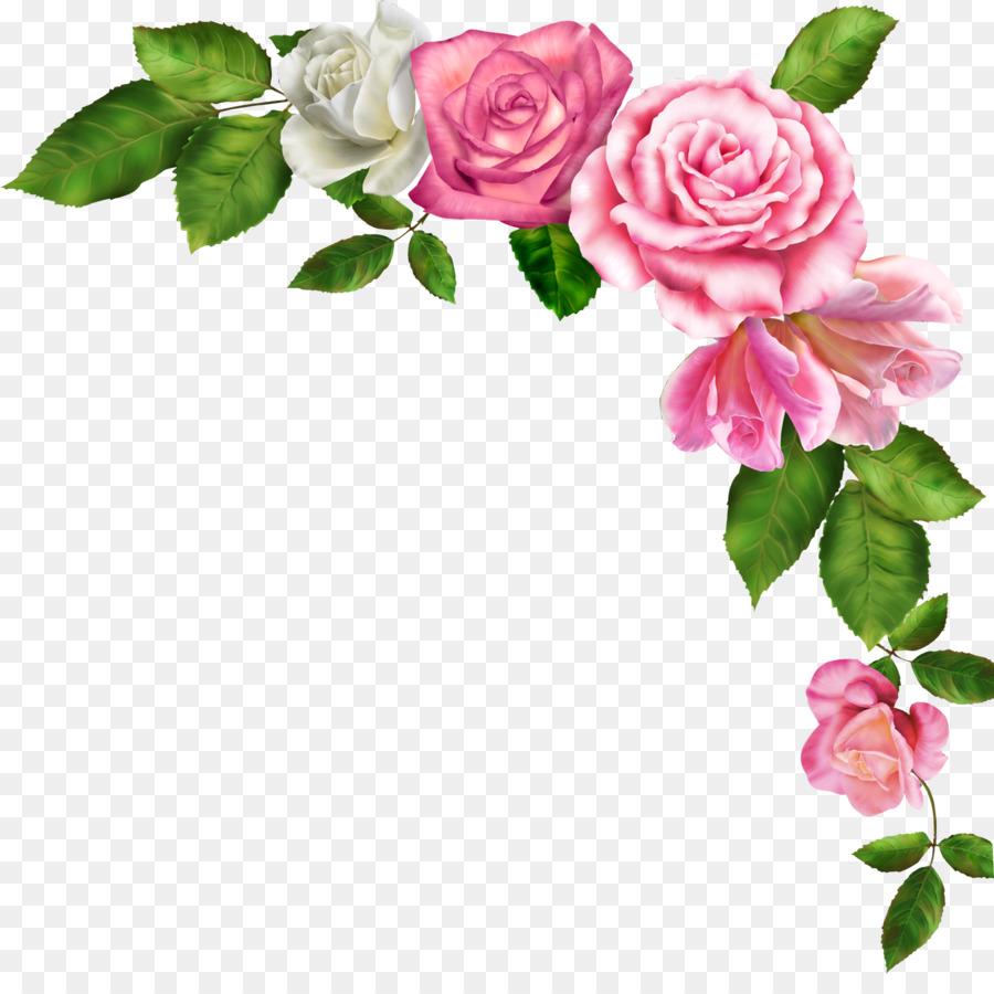 петрозаводска картинки цветов без рамки весной дюны также
