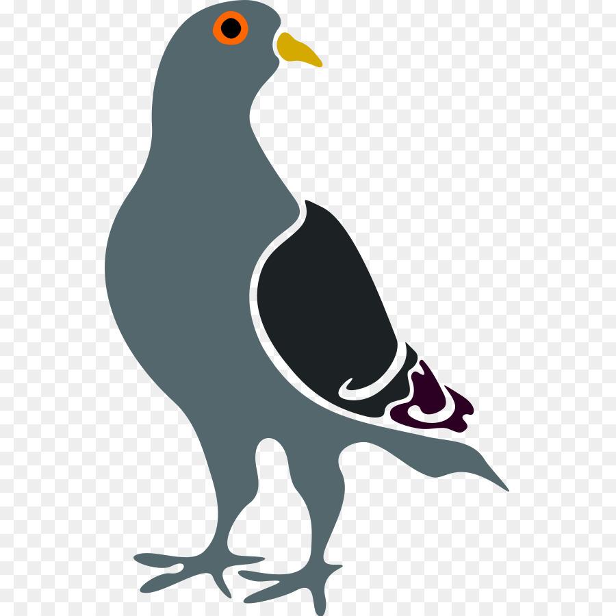 картинки мультяшные голуби поможет