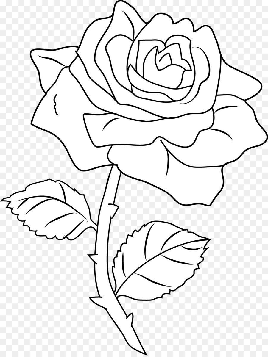 Черно-белая картинка цветка роза