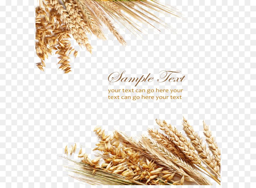 Открытка с колосьями пшеницы