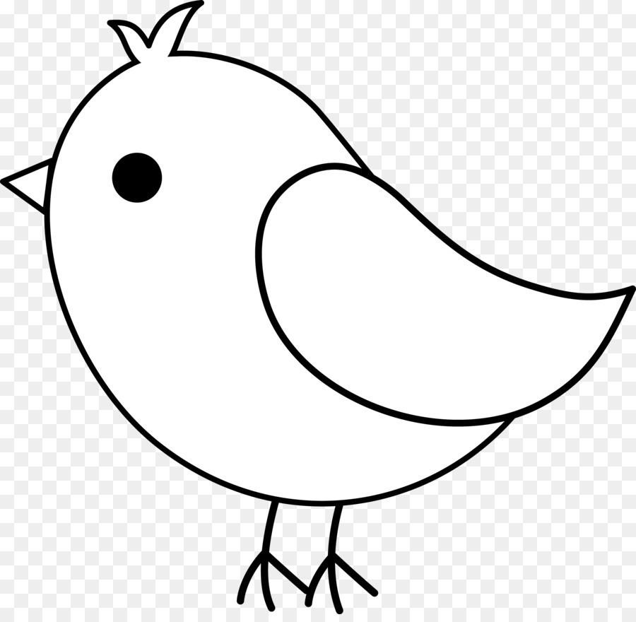 другом картинки птичек для раскраски его